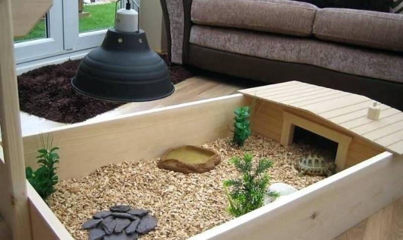 Chuồng nuôi rùa Sulcata