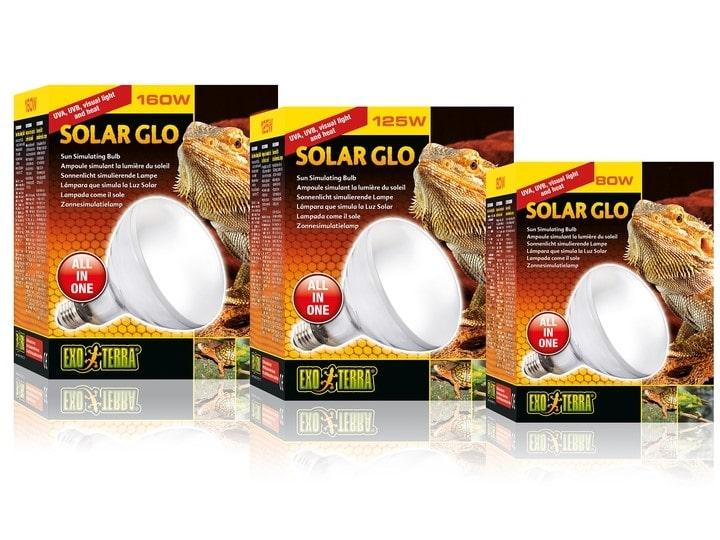 3 loại bóng đèn solar glo 3 in 1