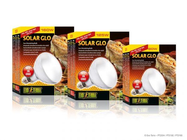 Đèn sưởi UVB Solar Glo