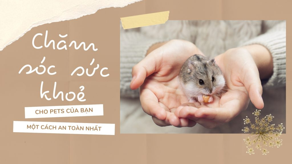 Banner Trang Chủ 3