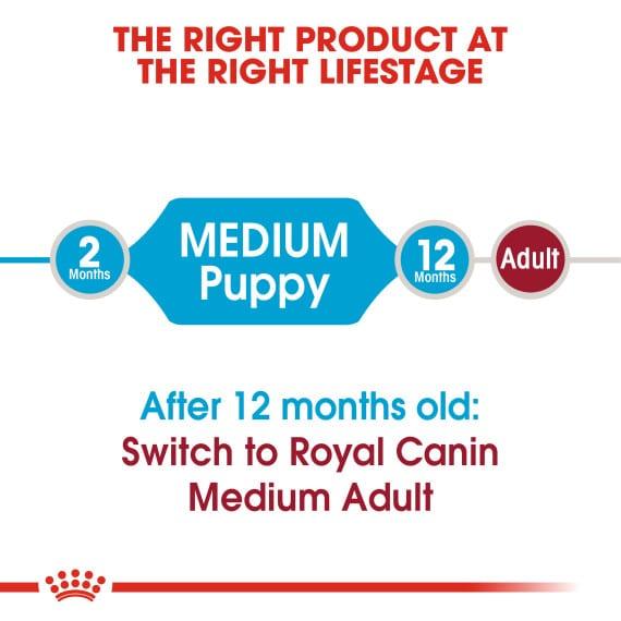 Medium Puppy Dry Dog Food / Thức Ăn Hạt Khô Cho Chó Con Cỡ Vừa 4