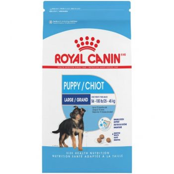 Thức Ăn Chó Con Cỡ Lớn - Royal Canin Large Puppy Dry 1