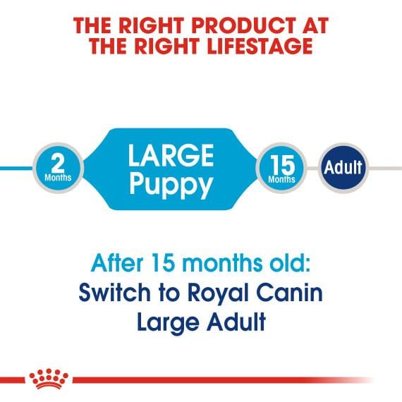 Thức Ăn Chó Con Cỡ Lớn - Royal Canin Large Puppy Dry 4