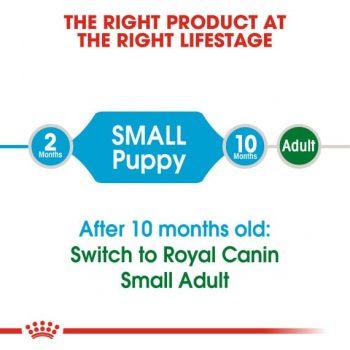 Thức Ăn Chó Con Cỡ Nhỏ Royal Canin Small Puppy Dry 4