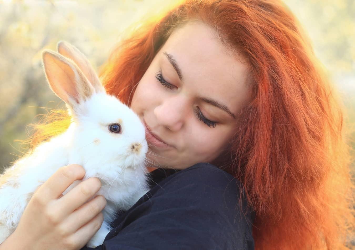 Thỏ Cảnh được nuôi làm thú cưng